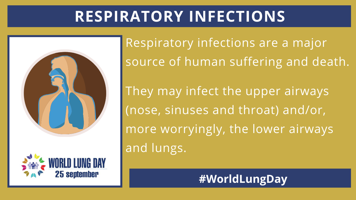 World Lung Day 2020: Respiratory groups call for research to prevent, detect and treat respiratory infections